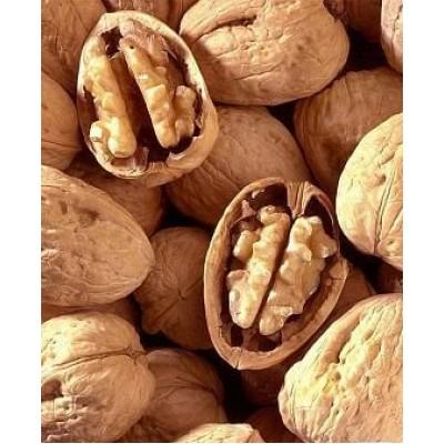 """Грецкий орех """"Hartley"""": отзывы и описание сорта"""